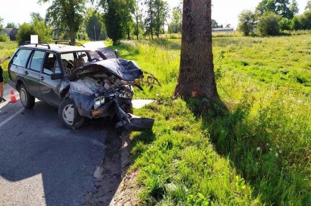 В Правдинском районе при столкновении с деревом пострадал водитель
