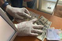 Под Кирилловкой чиновник за взятку отдал в аренду прибережные участки