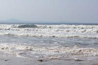 Мелководье на Шаморе заставляет многих уплывать далеко.