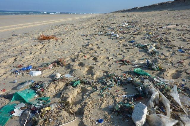 Берега рек и Черноморское побережье завалены одноразовым пластиком.