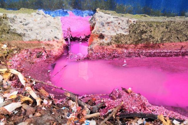 Розовое озеро обнаружили в своём огороде люди, живущие рядом с предприятием.