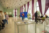 Списки наблюдателей, которые будут работать в Петербурге, уже сформированы
