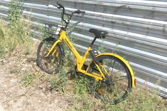 Нетрезвая жительница Калининграда угнала велосипед у охранника магазина