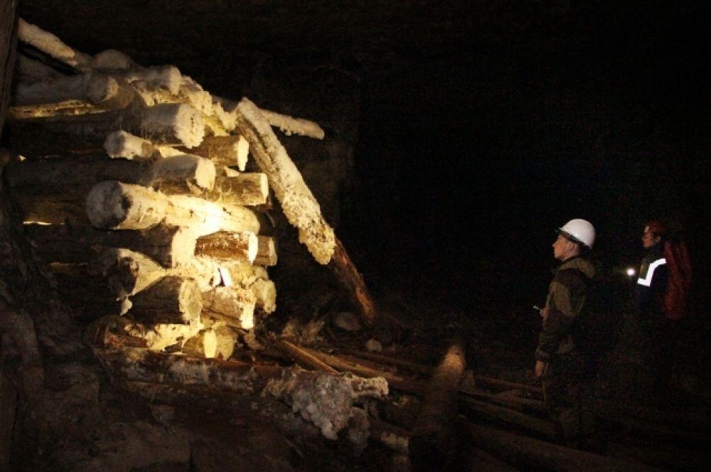 Деревянные сооружения в подземелье покрываются плесенью.