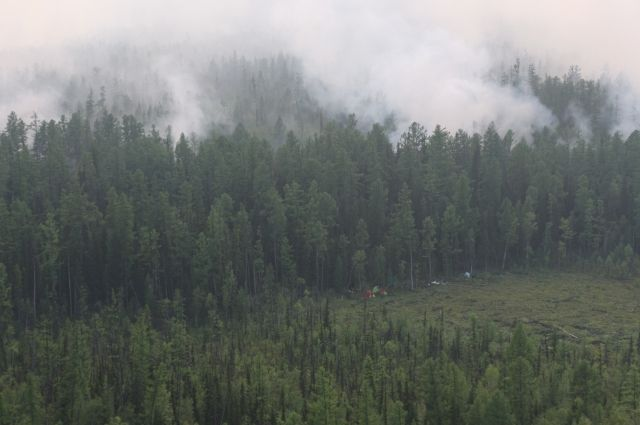 На территории края продолжает гореть 1 млн га леса.