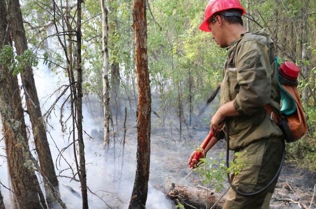 Ликвидировали пожар площадью 1570 гектаров.