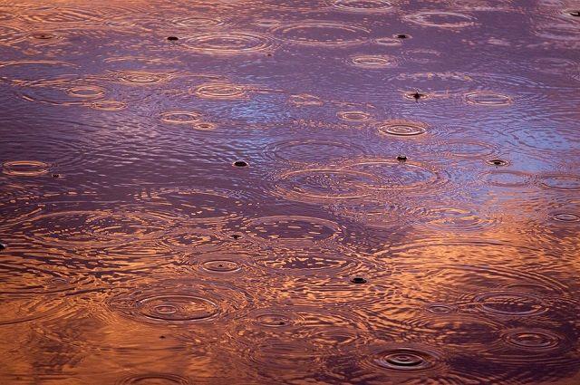Лужа образуется уже несколько лет после дождей. Воду откачивают, но когда снова начинается сильный дождь, она появляется снова.