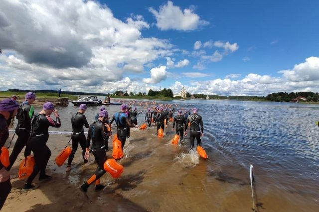 Тюменские моржи проплыли 700 км по Тоболу