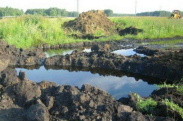 В последний раз разлив произошел недалеко от поселка Светлый Сакмарского района.