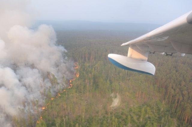 В крае действуют 129 очагов лесных пожаров.