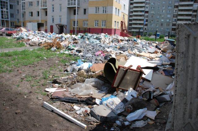 Поскольку вывоз мусора происходит нерегулярно, эти места превратились в зловонные кучи, привлекающие мышей, крыс, тараканов, не говоря уже о стаях бродячих собак и кружащих в небе коршунах.