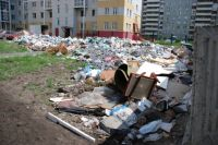 Многие не считают нужным даже донести мусор до контейнера.