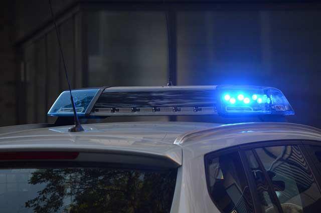 Полиция проводит проверку по факту ДТП.