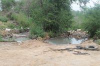 Рядом с посёлком Нежинка в пригороде областного центра расположена несанкционированная свалка.