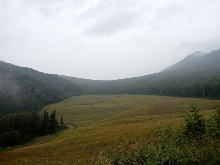 На участке, где велись работы по захоронению хлама, проведена рекультивация. Сейчас он похож на обычную лесную поляну.