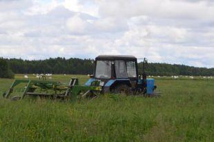 В этом году аграрии делают упор на заготовку силоса и сенажа.