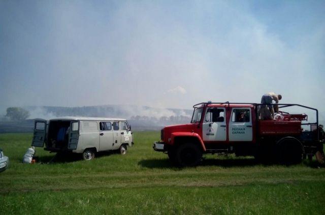 В 10-ти километровой зоне от поселений зарегистрировано 11 пожаров.