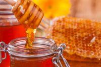 В Украине утверждены обязательные требования к меду