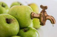 Специалисты назвали пять продуктов, которые ошибочно считаются полезными