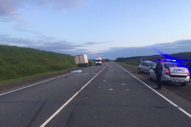 В Удмуртии на трассе сбили водителя сломавшейся машины