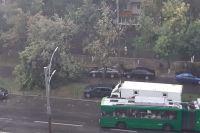 Киев накрыл мощный шторм: правила поведения в непогоду