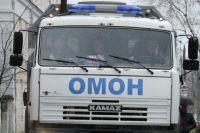 Житель тюменского села нашел на участке гранату