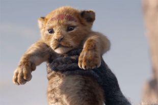 «Король Лев» установил рекорд по кассовым сборам анимационных фильмов