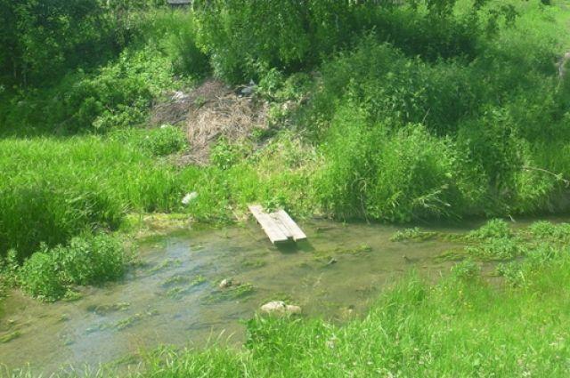 На уборку речных берегов вышли более 1 900 кузбассовцев.