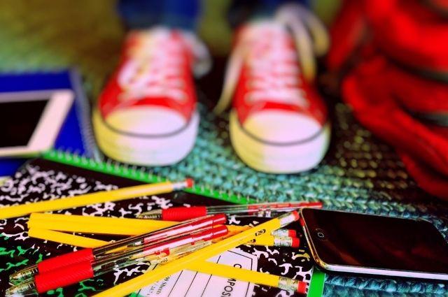 Дмитрий Кулагин: «К 1 сентября откроют свои двери почти все школы»