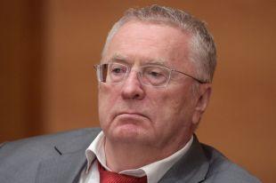 Лидер партии ЛДПР Владимир Жириновский.