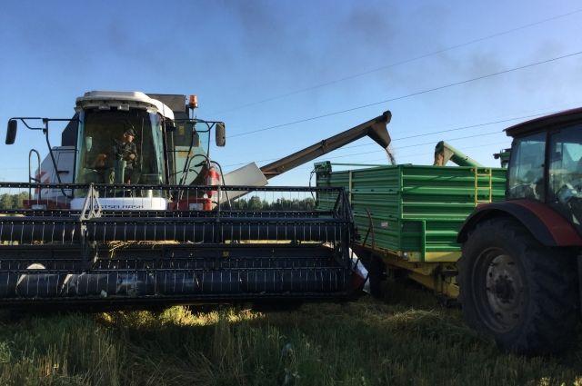 У сельхозпроизводителей имеются остатки грубых и сочных кормов с прошлого года.