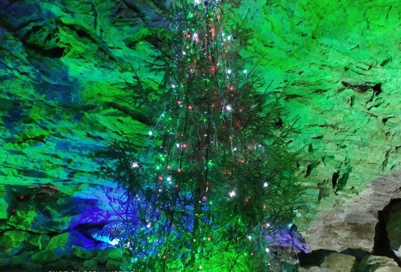 Неувядающая новогодняя ёлка стоит в пещере с октября 2017 года. А всё благодаря большой влажности, стабильной прохладе и чистому воздуху, которые царят в подземелье.