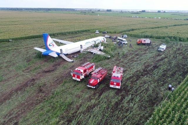 Специалисты Airbus осматривают аварийно приземлившийся А321