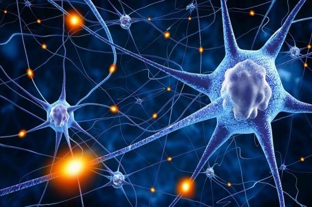 В человеческом теле обнаружены новые клетки, испытывающие боль