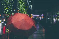 В дневные и вечерние часы ожидается небольшой дождь. Северо-западный ветер будет дуть со скоростью 2,2 метра в секунду.