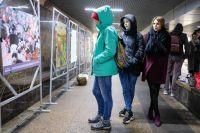 Выставка, посвящённая Павлу Комиссарову, в омском переходе.