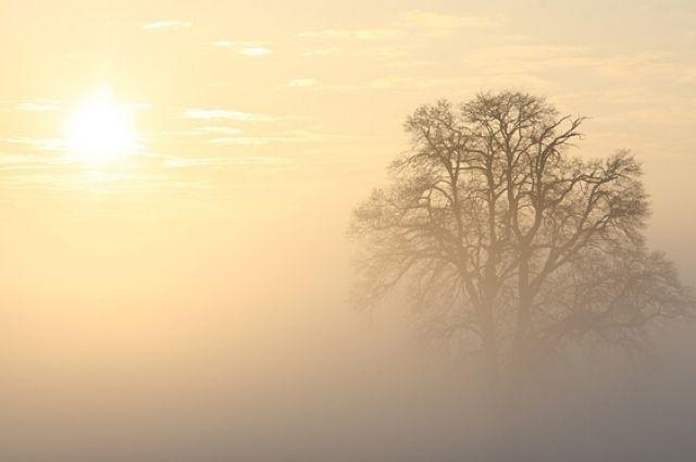 По данным портала CityAir, на сегодня уровень загрязнения воздуха в Новосибирске равняется семи баллам по десятибалльной шкале.