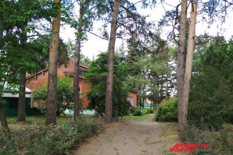 Подъездная аллея к музею в саду Комиссарова.