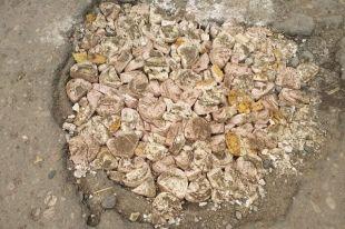 В Смоленске яму засыпали моделями зубных протезов.