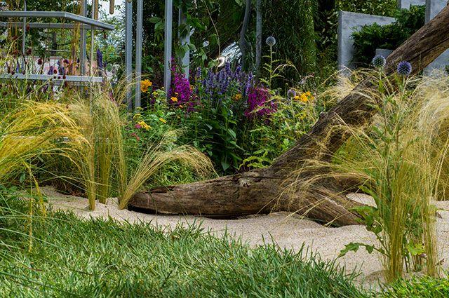 Сберечь планету. Экология — одна из главных тем фестиваля «Сады и люди»