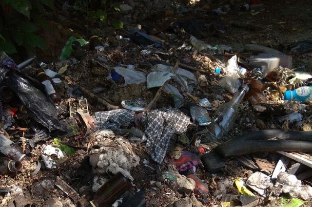Тюменская птицефабрика получила штраф за незаконную свалку отходов