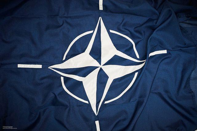 За год на Украине стало меньше сторонников вступления в НАТО
