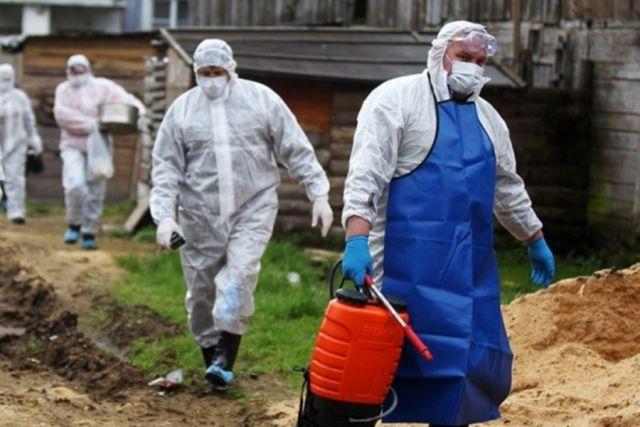 Роспотребнадзор проверяет сведения о вспышке чумы в Донецкой области
