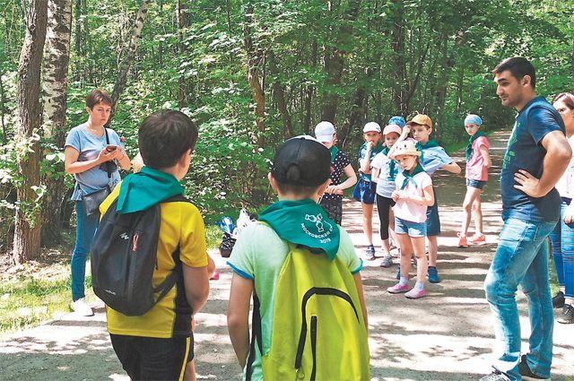 На экскурсиях по парку «Покровское-Стрешнево» рассказывают о его истории, флоре и фауне.