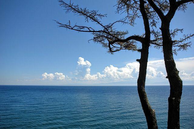 Прибайкальский национальный парк простирается на 470 км вдоль побережья Байкала