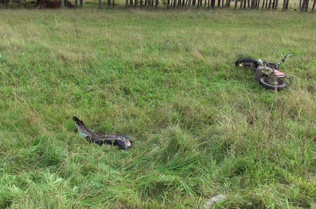 В Удмуртии пьяный подросток на мотоцикле улетел в кювет