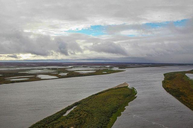 АО «Транснефть-Сибирь» участвовало в выпуске мальков чира в реку на Ямале