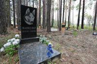 Киевлянам придется перезахоронить домашних животных на Русановском кладбище. Фото иллюстративное.