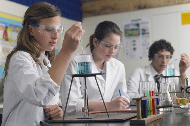 В опорных школах будут готовить будущих ученых.