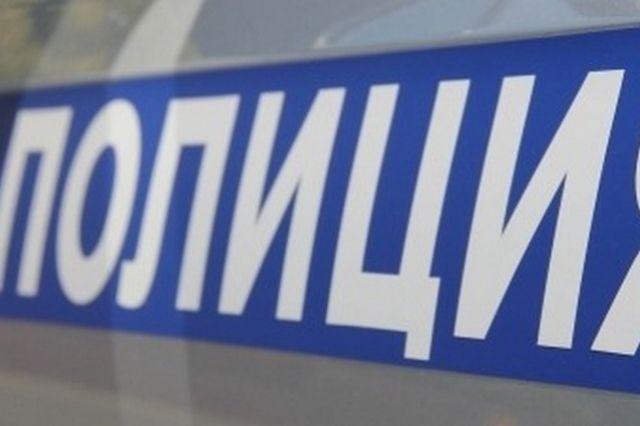 Полиция возбудила уголовное дело по части 1 статьи 245 УК РФ «Жестокое обращение с животными».